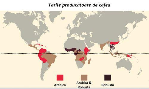 tari producatoare de cafea