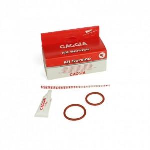 Gaggia Service Kit pentru intretinere grup cafea